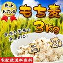 バーゲン ぷちぷち ダイエット