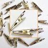 ワニグチクリップ20個パックミニサイズでもしっかりくわえる強力クリップ