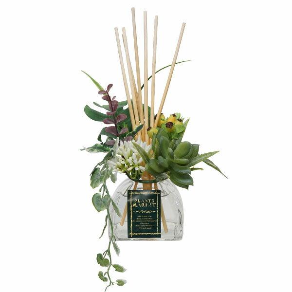 リードディフューザー 元蔵C-Plant シープランツ ディフューザーセダム フレッシュシトラスの香り665993