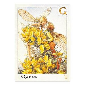 【クーポン配布中】ポストカードグリーンフラッシュ GreenFlash FLOWER FAIRIESFF-026 The Gorse Fairy