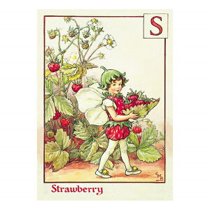 【クーポン配布中】ポストカードグリーンフラッシュ GreenFlash FLOWER FAIRIESFF-031 The Strawberry Fairy