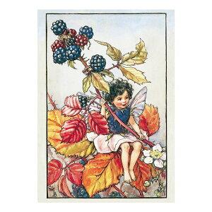 【クーポン配布中】ポストカードグリーンフラッシュ GreenFlash FLOWER FAIRIESFF-034 The Blackberry Fairy