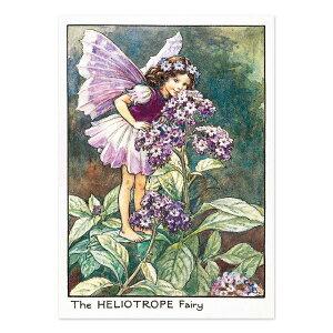 【クーポン配布中】ポストカードグリーンフラッシュ GreenFlash FLOWER FAIRIESFF-043 The Hellotrope Fairy