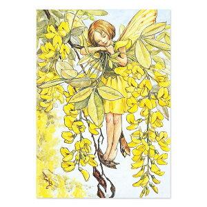【クーポン配布中】ポストカードグリーンフラッシュ GreenFlash FLOWER FAIRIESFF-054 The Laburnum Fairy
