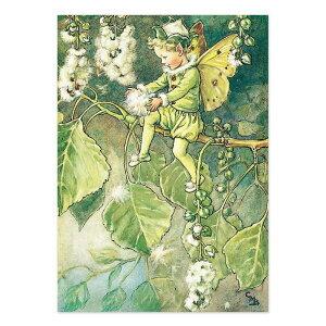 【クーポン配布中】ポストカードグリーンフラッシュ GreenFlash FLOWER FAIRIESFF-056 The Poplar Fairy