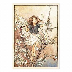 【クーポン配布中】ポストカードグリーンフラッシュ GreenFlash FLOWER FAIRIESFF-063 The Blackthorn Fairy