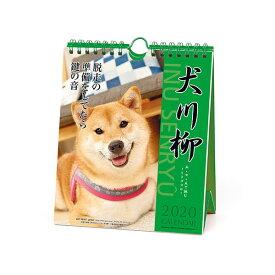 カレンダー 壁掛け 卓上 2020年 APJ アートプリントジャパン 犬川柳 週めくり 1000109214