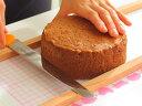 手作り 材料 手作りチョコ 【 スポンジケーキ ココア 冷凍 15cm 】ケーキ ホールケーキ 手作りケーキ