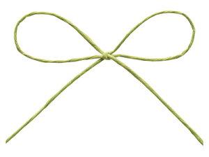 パピエール29 ピスタチオグリーン バレンタイン 手作り お菓子 ラッピング ラッピング用品 プレゼント リボン 無地 紐 業務用