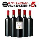 【送料無料】SALE ワイン 福袋 「F1」ポイヤック入り!ソムリエお年玉福袋・赤ワイン5本 送料無料 赤ワインセット【ギ…