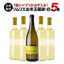 【送料無料】SALE ワイン 福袋 「F2」1級シャブリ入り!ソムリエお年玉福袋・白ワイン5本 送料無料 白ワインセット【…