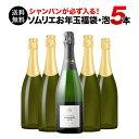 【送料無料】SALE ワイン 福袋 「F3」シャンパン入り!ソムリエお年玉福袋・スパークリング5本 送料無料 ワインセット…