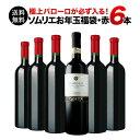 【送料無料】SALE ワイン 福袋 「F14」極上バローロ入り!ソムリエ上質お年玉福袋・フルボディ赤ワイン6本 送料無料 …