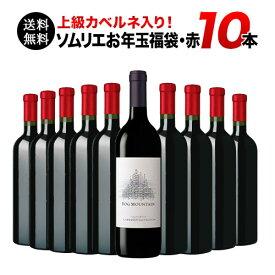 【送料無料】SALE ワイン 福袋 「F18」上級カベルネ入り!ソムリエ上質お年玉福袋・赤ワイン10本 送料無料 赤ワインセット【ギフト ワイン】【ソムリエ】【家飲み】【バレンタイン】