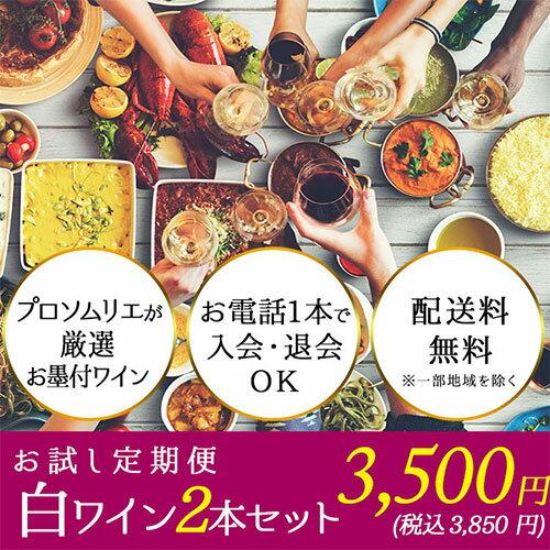 【送料無料】ソムリエお試し定期便 白ワイン2本セット(1ヶ月毎お届け) 送料無料 白ワインセット