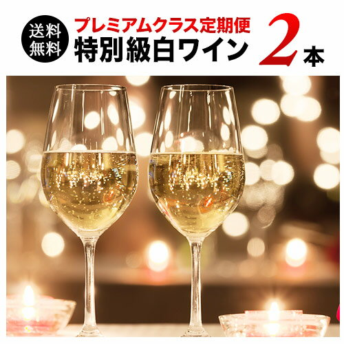 【送料無料】ソムリエプレミアムクラス定期便 特別級白ワイン2本セット(1ヶ月毎お届け) 送料無料 白ワインセット