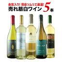 現役ソムリエの売れ筋白ワイン5本セット 第7弾 白ワインセット【12本単位のご購入で送料無料/ギフト・プレゼント対応可】【ギフト ワイ…