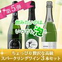 クーポン スパークリングワイン スパークリングワインセット プレゼント