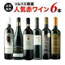 【送料無料】ソムリエ人気赤ワイン6本セット 第44弾 送料無料 赤ワインセット 【smtb-T】【ギフト・プレゼント対応可】【ギフト ワイン…