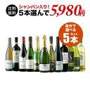 【送料無料】SALE!自分で作るワイン収穫5本セット 送料無料 ワインセット【ギフト・プレゼント対応可】【ギフト ワイ…