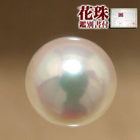 あこや本真珠 [オーロラ花珠 鑑別書付] パールルース(シングル) 7.5-8.0mm AAA ホワイト系 ラウンド (片穴があいています)[n4][4-438](真珠 パール)(セミオーダー 加工用)