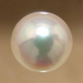 あこや本真珠 パールルース(シングル) ホワイト系 7.5-8.0mm AAB ラウンド (片穴があいています)[n3][4-416](真珠 パール)(セミオーダー 加工用)