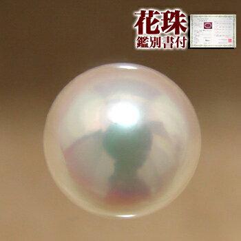 \お盆クーポン配布/「あこや本真珠[オーロラ花珠鑑別書付]パールルース(シングル)8.5-9.0mm AAA」[n4]