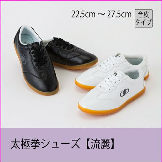 Tai chi chuan shoes person mechanic leather