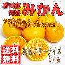 香川産 みかん 5kg箱[送料無料♪](順次発送!宮川早生・青島)
