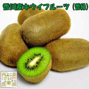 香川産 キウイフルーツ(香緑) 2kg[送料無料♪](11月下旬〜)