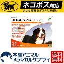 【ネコポス(ポスト投函)対応】【送料無料】犬用 フロントラインプラス XL (40kg〜60kg) 1箱 6本入 6ピペット【動物用…