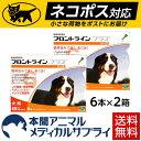 【ネコポス(ポスト投函)対応】【送料無料】犬用 フロントラインプラス XL (40kg〜60kg) 2箱 12本入 12ピペット【動物用医薬品】