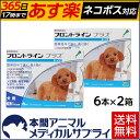 【送料無料】犬用 フロントラインプラス S (5-10kg未満用) 2箱 12本入 12ピペット【動物用医薬品】【365日あす楽】