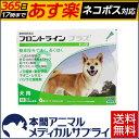 【送料無料】犬用 フロントラインプラス M (10kg〜20kg) 1箱 6本入 6ピペット【動物用医薬品】【365日あす楽】