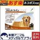 【送料無料】犬用 フロントラインプラス L (20kg〜40kg) 1箱 6本入 6ピペット【動物用医薬品】【365日あす楽】