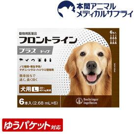 【メール便送料無料】犬用 フロントラインプラス L (20kg〜40kg) 1箱 6本入 6ピペット【動物用医薬品】【d_frnt】【1903_flp】