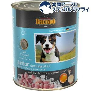 ベルカンド ジュニア 家禽肉と卵 缶詰(800g*6個入)【zaiko_food】