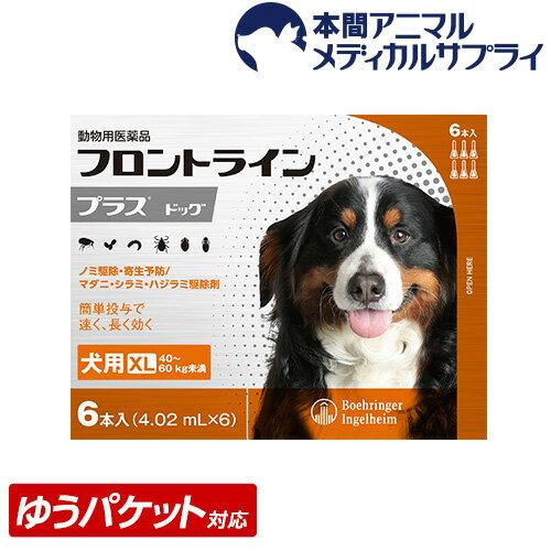 【メール便送料無料】犬用 フロントラインプラス XL (40kg〜60kg) 1箱 6本入 6ピペット【動物用医薬品】【d_frnt】