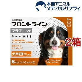 【動物用医薬品】フロントラインプラス 犬用 XL 40〜60kg未満(6本入*2箱セット)【フロントラインプラス】