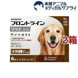 【動物用医薬品】フロントラインプラス 犬用 L 20〜40kg未満(6本入*2箱セット)【フロントラインプラス】