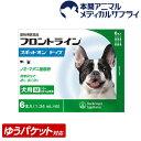 【メール便送料無料】犬用 フロントラインスポット オン ドッグ M (10kg〜20kg)6ピペット【動物用医薬品】【d_frnt】