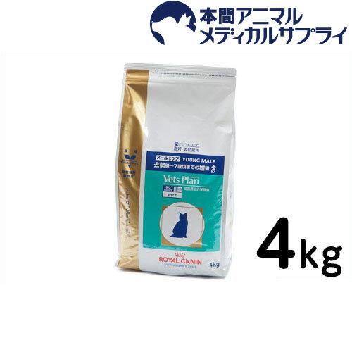 ロイヤルカナン 準食事療法食 猫用 ベッツプラン メールケア ドライ 4kg