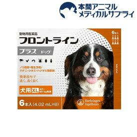 【動物用医薬品】フロントラインプラス 犬用 XL 40〜60kg未満(6本入)【fr_cp】【フロントラインプラス】
