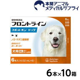 フロントラインスポットオン 犬用 XL 40〜60kg未満 6本入x10セット【d_frnt】