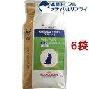 ロイヤルカナン 猫用 ベッツプラン エイジングケア ステージI(2kg*6袋セット)【ロイヤルカナン(ROYAL CANIN)】[キャッ…