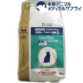 ロイヤルカナン 猫用 ベッツプラン メールケア(4kg)【2shwwpc】【ロイヤルカナン療法食】