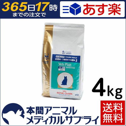 【送料無料】ロイヤルカナン 準食事療法食 猫用 ベッツプラン メールケア ドライ 4kg【365日あす楽】