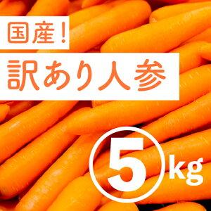にんじん 5kg 訳あり 国産 残留農薬0