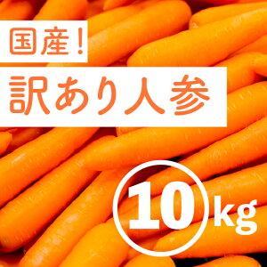 にんじん 10kg 訳あり 国産 残留農薬0