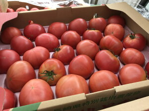 国産 熟し トマト とまと 訳あり 1箱 約4キロ 大きさおまかせ